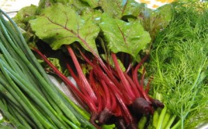 chives-baby-red-beets-dill-weed1