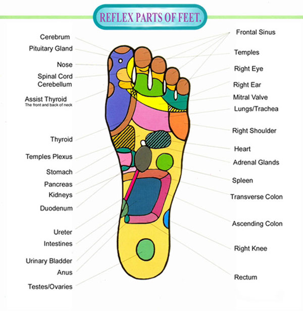 Pressure Points In Your Feet Chart And Videos
