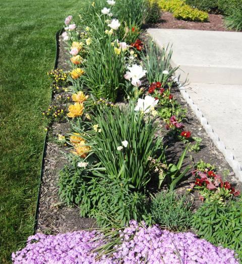 spring garden 2012