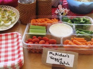 Farmer McAidan's Veggie snacks
