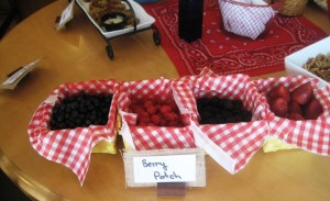 Fruit Patch - fun party food