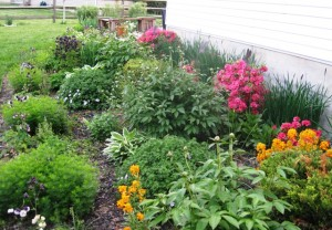 Spring Garden 2014