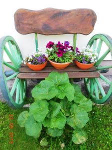 very original flower stand with potted Petunias and Alysium