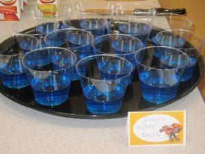 Zumas water bowls